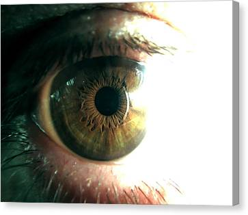 The Physicists Eye Canvas Print by Mlle Marquee