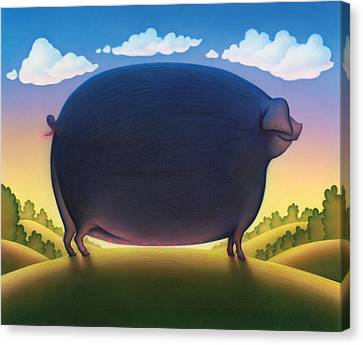The Pig Canvas Print by Andrew Farley