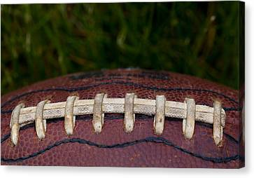 The Pigskin Canvas Print by David Patterson