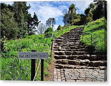 The Pilgrims' Steps Canvas Print