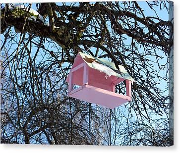 The Pink Bird Feeder Canvas Print by Ausra Huntington nee Paulauskaite