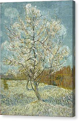 The Pink Peach Tree Canvas Print by Vincent van Gogh