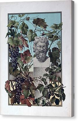 The Plant, Grapes, Bacchus, Wine, Mythology, Vine, Symbol Canvas Print by English School