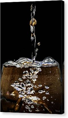 The Plunge Canvas Print by PhotoWorks By Don Hoekwater