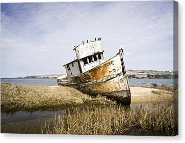 The Point Reyes Canvas Print by Priya Ghose