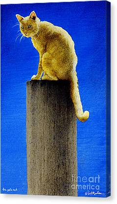 The Pole Cat... Canvas Print by Will Bullas