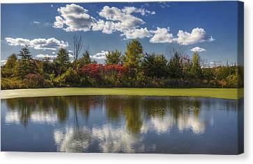 The Pond In Autumn Canvas Print by Steve Gravano