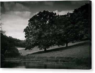 Canvas Print featuring the photograph The Pond by Stewart Scott
