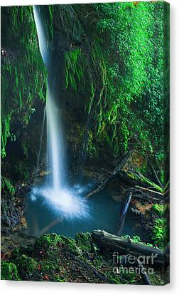 Water Falls Canvas Print - The Pool by Wayne Stacy