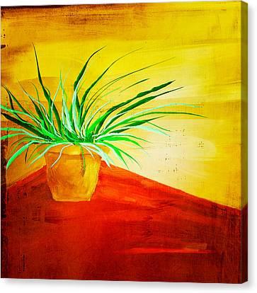 The Pot Plant Canvas Print by Brenda Bryant