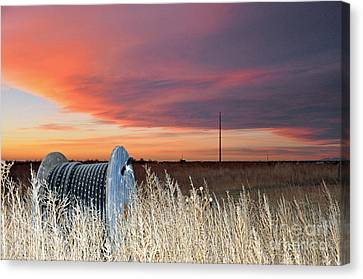 The Prairie Canvas Print