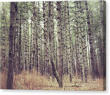 The Preaching Of The Pines Canvas Print by Kerri Farley