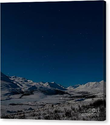 The Presence Of Absolute Silence Canvas Print by Priska Wettstein