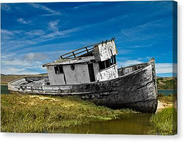 Marin County Canvas Print - The Pt. Reyes Muted by Bill Gallagher