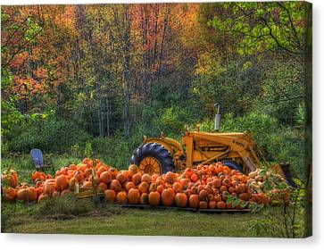 The Pumpkin Patch Canvas Print by Joann Vitali