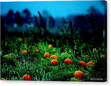 Canvas Print featuring the photograph The Pumpkin Patch by Lesa Fine