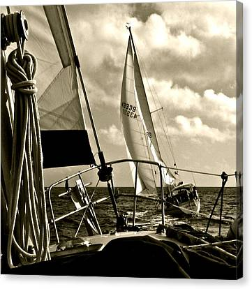 The Pursuit Canvas Print by Kim Pippinger
