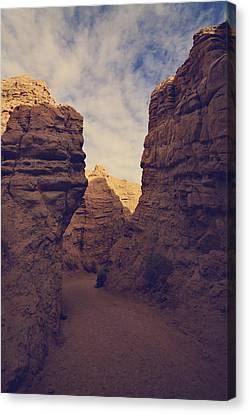 The Pyramid Canvas Print by Laurie Search
