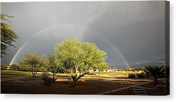 The Rain And The Rainbow Canvas Print by Lucinda Walter