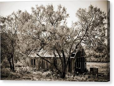 Canvas Print featuring the photograph The Ranch  by Amber Kresge
