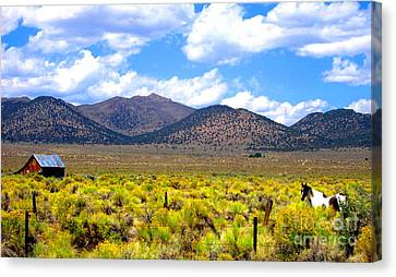 Canvas Print featuring the photograph The Ranch by Marilyn Diaz