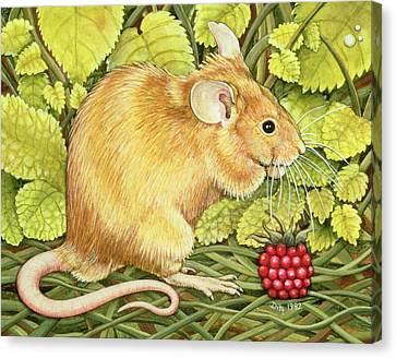 The Raspberry Mouse Canvas Print by Ditz