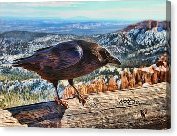 The Raven Canvas Print by Marti Green