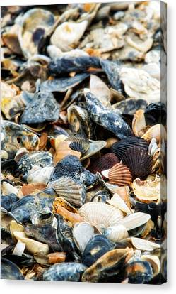 Canvas Print featuring the photograph The Raw Bar by Joan Davis
