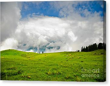 The Real Windows Desktop Canvas Print by Syed Aqueel