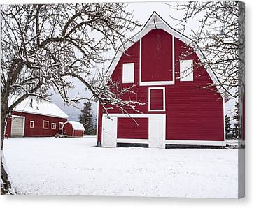 The Red Barn Canvas Print by Fran Riley