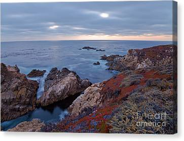 Canvas Print featuring the photograph The Red Carpet by Jonathan Nguyen