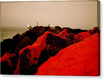The Red Dawn Canvas Print by Sheldon Blackwell