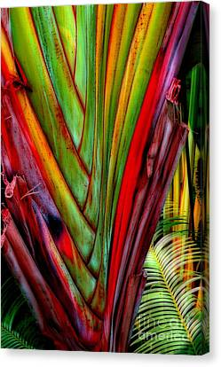 The Red Jungle Canvas Print