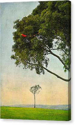 The Red Kite Canvas Print by Marianne Campolongo