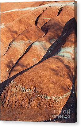 The Red Planet Canvas Print by Barbara McMahon