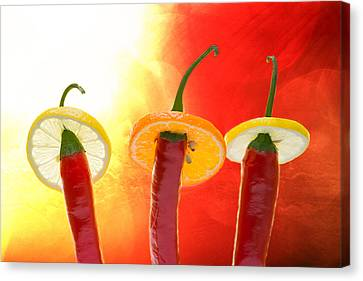 The Red - The Hot - The Chili Canvas Print by Alexander Senin