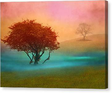Canvas Print featuring the digital art The Red Tree by Nina Bradica
