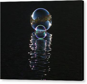 The Reflection  Canvas Print by Terry Cosgrave