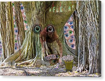 Rooted Canvas Print - The Reincarnation Of Seeing by Betsy Knapp