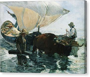 The Return From Fishing Canvas Print by Joaquin Sorolla y Bastida