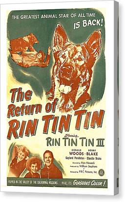 The Return Of Rin Tin Tin, Us Poster Canvas Print by Everett