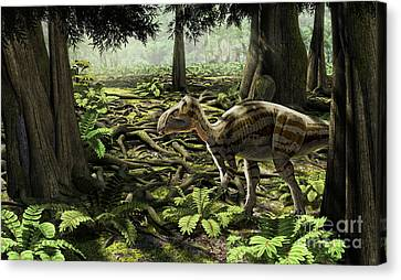 The Rhabdodontid Iguanodont Zalmoxes Canvas Print