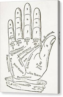 Antique Palmistry Diagram  The Right Hand Canvas Print by German School