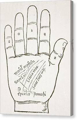 Antique Palmistry Diagram  The Right Hand, Principal Lines Canvas Print by French School