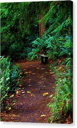 The Right Path Canvas Print by Jeanette C Landstrom