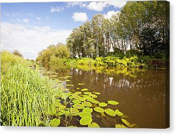 The River Avon At Pershore Canvas Print by Ashley Cooper