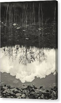 The River I Canvas Print by Marco Oliveira