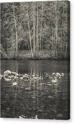 The River II Canvas Print by Marco Oliveira