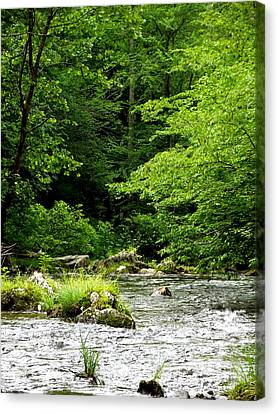 The River Runs Canvas Print by Russell Clenney