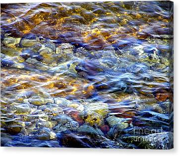 Canvas Print featuring the photograph The River by Susan  Dimitrakopoulos
